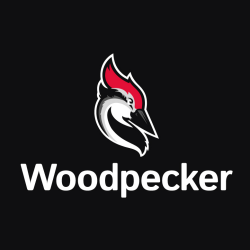 Automated email follow-up with Woodpecker