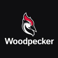 Automatyczne e-maile follow-up dzięki Woodpecker