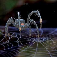 20 najlepszych crawlerów SEO